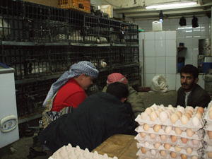 Eggs are not refrigerated in most parts of the country